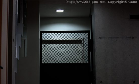 群馬M邸-鉄ドア(アイアンメッシュドア)施工